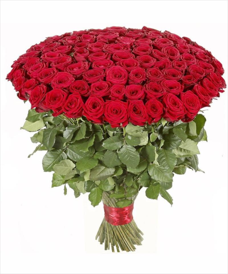 Цветы козерог гороскоп